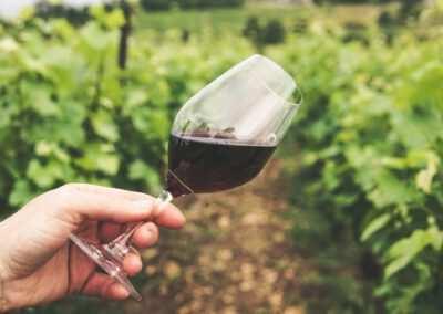 Wijn (rood)